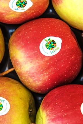 jabłka lubapple
