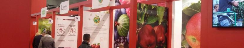 Targi Fruit Logistica w Berlinie